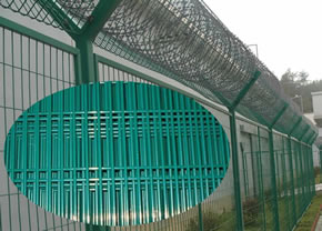 Green vinyl coated welded wire fence of rectangular hole structure used as perimeter security mesh with concertina razor coils on top supported by Y post