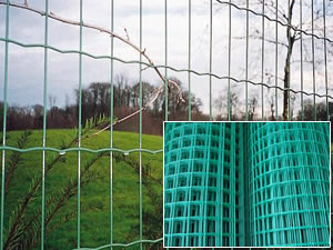 Border and Perimeter Fencing